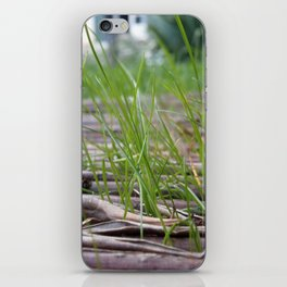 Grass and dead leaves iPhone Skin
