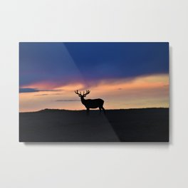 Sunset Beauty Metal Print