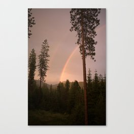 After The Storm III Canvas Print