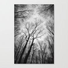 Vertigo 1 Canvas Print