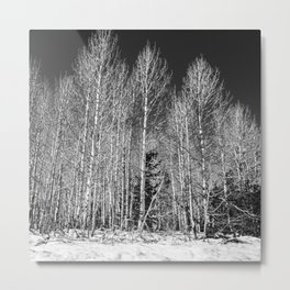 First day of winter in Hope Valley Metal Print