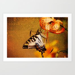 Swallowtail Butterfly and Tiger Lily Art Print