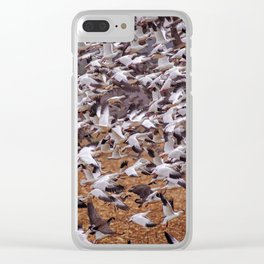 Snow geese in flight Clear iPhone Case