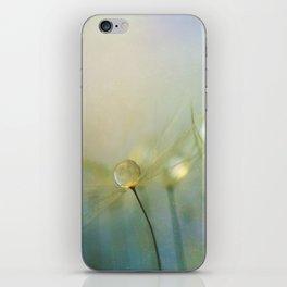 Shine Your Light iPhone Skin