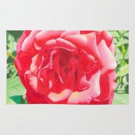 Hildegard's Rose Rug