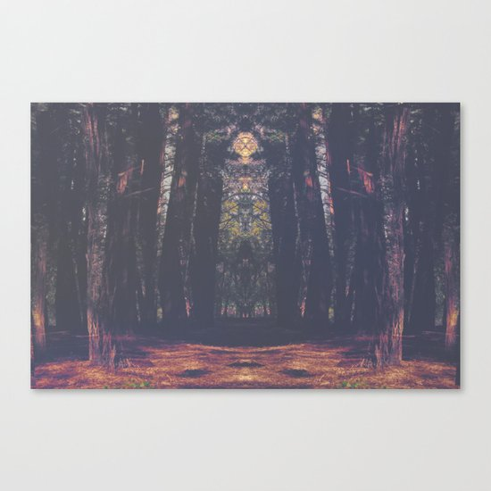 Acid Adventure Canvas Print
