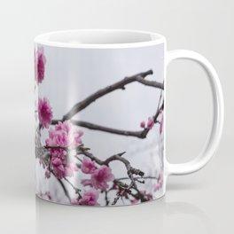 Sakura IV Coffee Mug