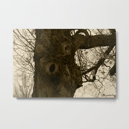 AN OLD FRIEND Metal Print