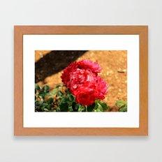 flowers again Framed Art Print