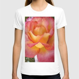 Dew Drop Fire Rose, 2012 T-shirt