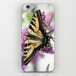 Western Tiger Swallowtail on the Neighbor's Butterfly Bush iPhone Skin