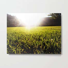 and the grass is always greener.. Metal Print