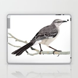 Northern mockingbird - Cenzontle - Mimus polyglottos Laptop & iPad Skin