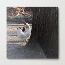 Neighborhood Watch Metal Print