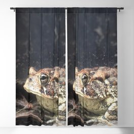 Toad Blackout Curtain