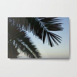 Palm Fronds at Dawn Metal Print