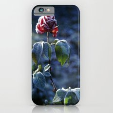 Frosted Rose iPhone 6s Slim Case