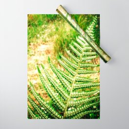 Green Fern Wrapping Paper