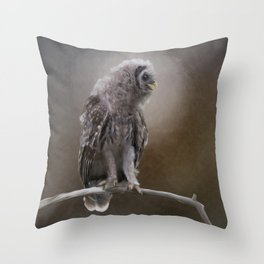 Young Barred Owl Perches on a Branch.Digital painting Throw Pillow