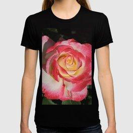 Multi-Hued Rose T-shirt