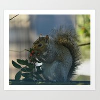 squirrel Art Prints featuring squirrel by Timeless Art On Canvas