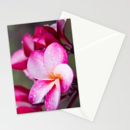 Pua Melia Floral Celebration Stationery Cards