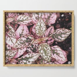 Green veined pink leaves Serving Tray