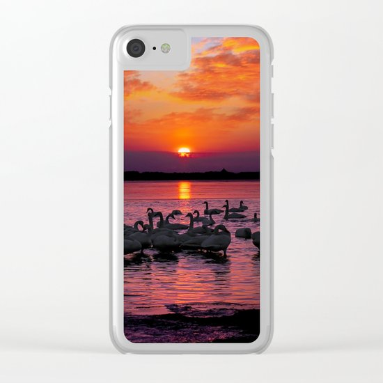 swans at sunset Clear iPhone Case