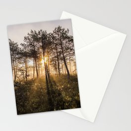 First rays of sunshine Stationery Cards