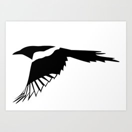 Pica Pica (magpie)  one Galery Giftshop Art Print