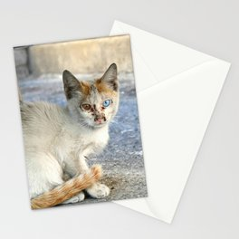Kitten under a car Stationery Cards