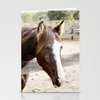 harley Stationery Cards featuring Harley by Images by Nicole Simmons