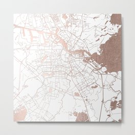 Amsterdam White on Rosegold Street Map Metal Print