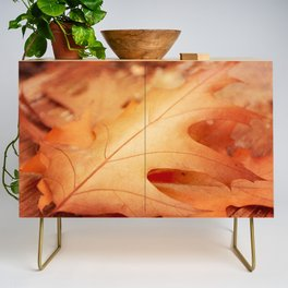 AFE Autumn Leaves, Nature Photography Credenza