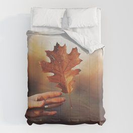 Catching a bit of Autumn Comforters