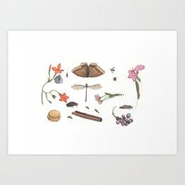 Common place miracles -Natural History Part V Art Print