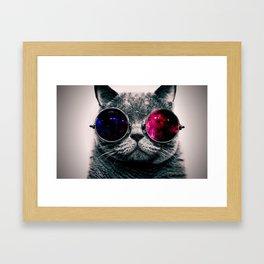 sunglasses cat Framed Art Print