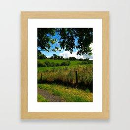 Irish Field Framed Art Print