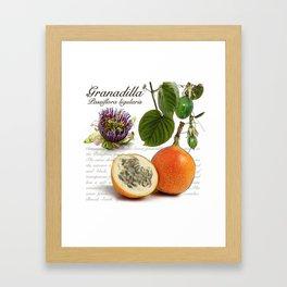 Granadilla Framed Art Print