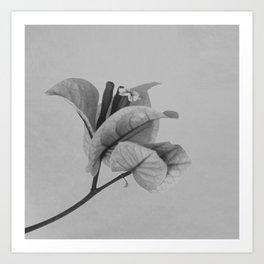 Forgotten No.1 Art Print
