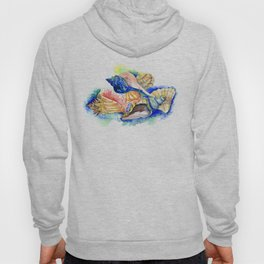 Beach design, Seashell, ocean beach seashell artwork, beach house Hoody