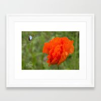 poppy Framed Art Prints featuring Poppy by Fine Art by Rina