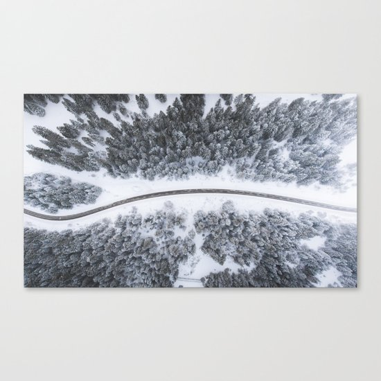 road through forest Canvas Print