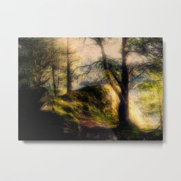 Misty Solitude, The Way Through The Woods Metal Print