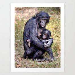 Bonobo and Her Baby Art Print