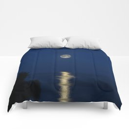 Blue Night  Comforters