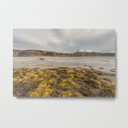 Ben Loyal Metal Print