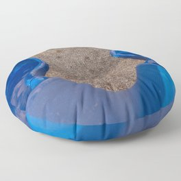 slide Floor Pillow