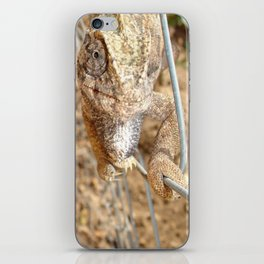 Chameleon Walking on A Wire iPhone Skin