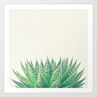 Lace Aloe Art Print